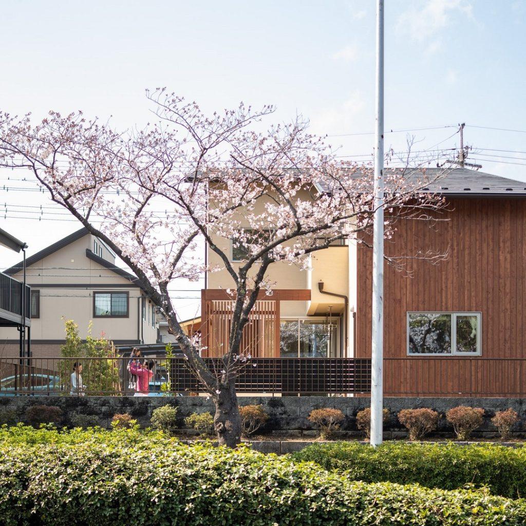 桜に包まれる我が家